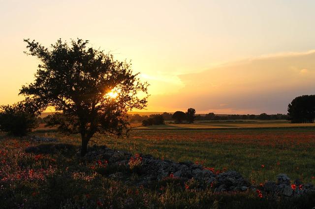 Caratteristiche fisiche dalla Puglia e del Gargano