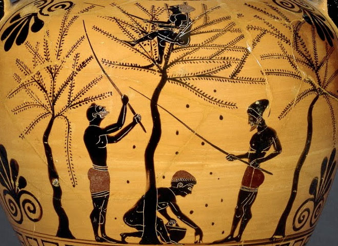 L'olio di oliva nella storia